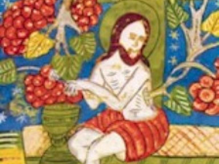 Jezus wijnstok